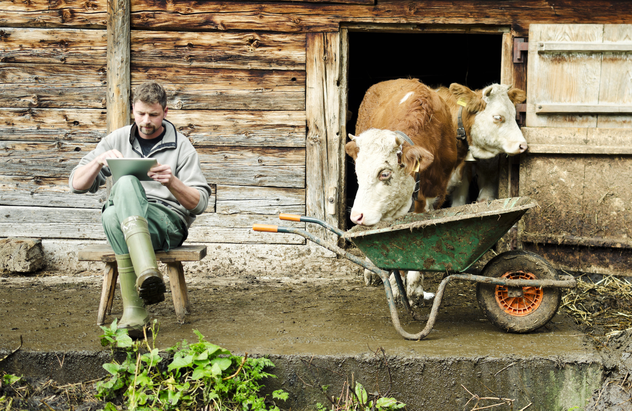 A modern Swiss farmer is working with a touch screen tablet device in front of his barn